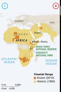 CheetahsMap